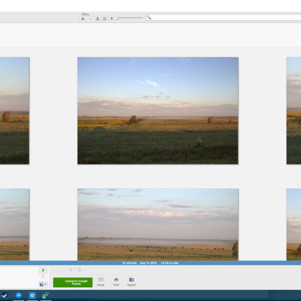 Picasa 800x Thumbnails
